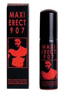 Maxi-Erectie907_8077